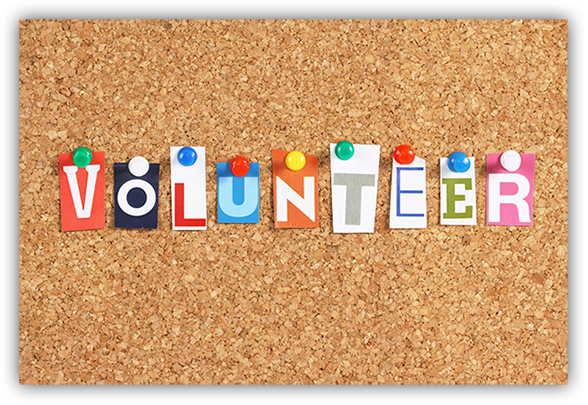 Volunteer at the Fairhope Public Library